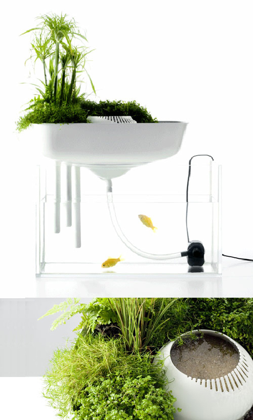 floating garden/ benjamingraindorge