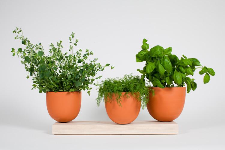 grow pots / hallgeir homstvedt
