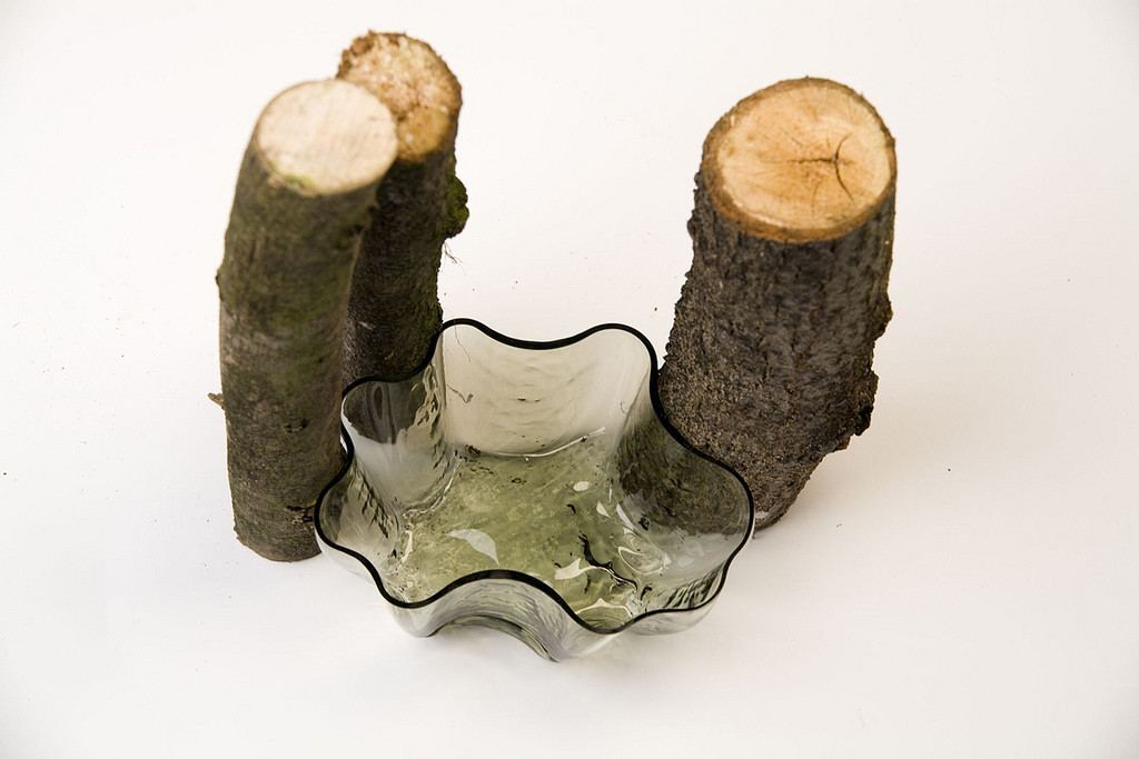 among the trees / Vyrobeno Lesem