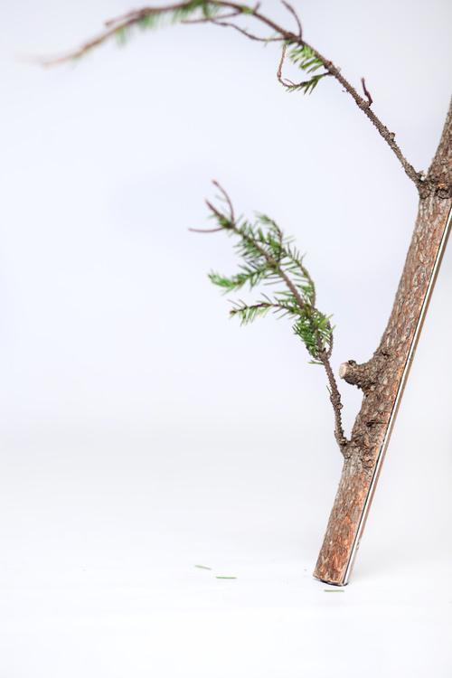 stick table/ Esra Jakobsson